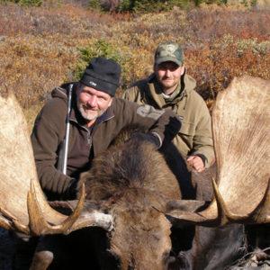 Jakt Canada stor elg med 2 jegere