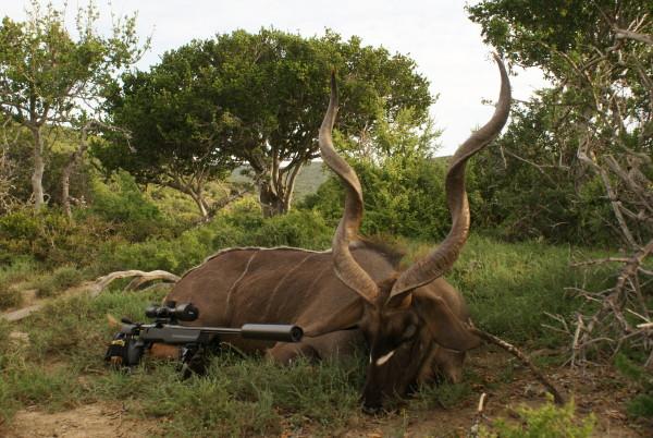 Jakt-Sør-Afrika-Kudu-og-gevær.jpg