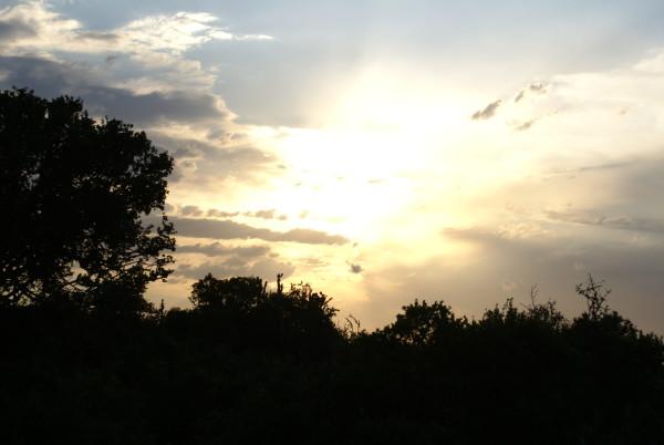 Jakt-Sør-Afrika-solnedgang.jpg