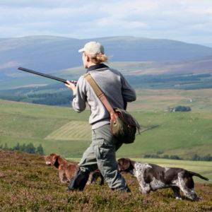 Jakt Skottland rypejakt jeger med 2 hunder