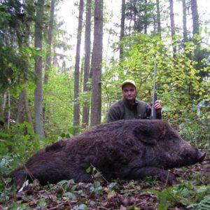 Jakt-Sverige-Villsvin-ca-100kg.jpg