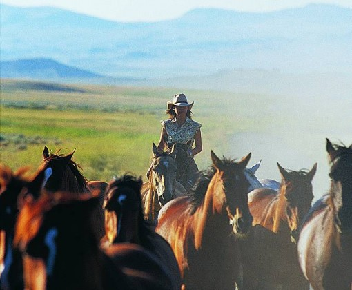 Rideferie-Montana-Bonanza Creek Ranch-samle inn hestene