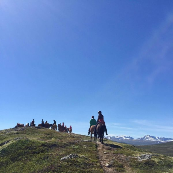Rideferie_Norge_Fjellridning på Dovre (2)