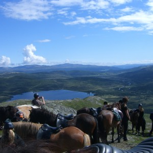 Rideferie_Norge_Hjerkinn (4)