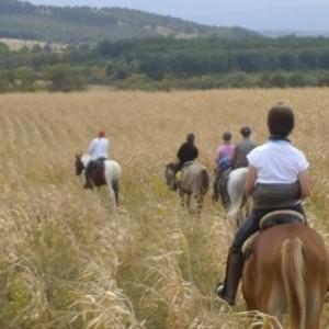 Rideferie_Bulgaria_Balkanritt (4)