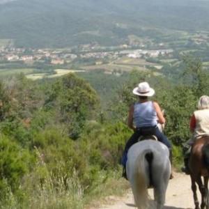 Rideferie_Italia_Toscana_Chiantis slott (4)