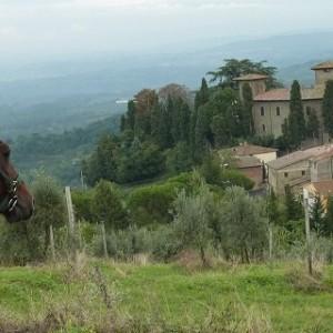 Rideferie_Italia_Toscana_Oppdag Toscana (12)