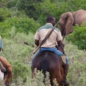 Rideferie_Ridesafari_Afrika_ Botswana_Limpopo Bush & Lodge (7)