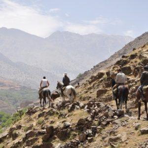 Rideferier_Marokko_Toubkal_ridning (15)